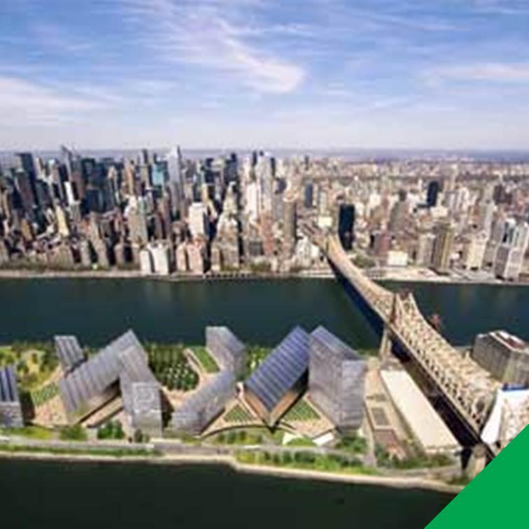 NY zero emission