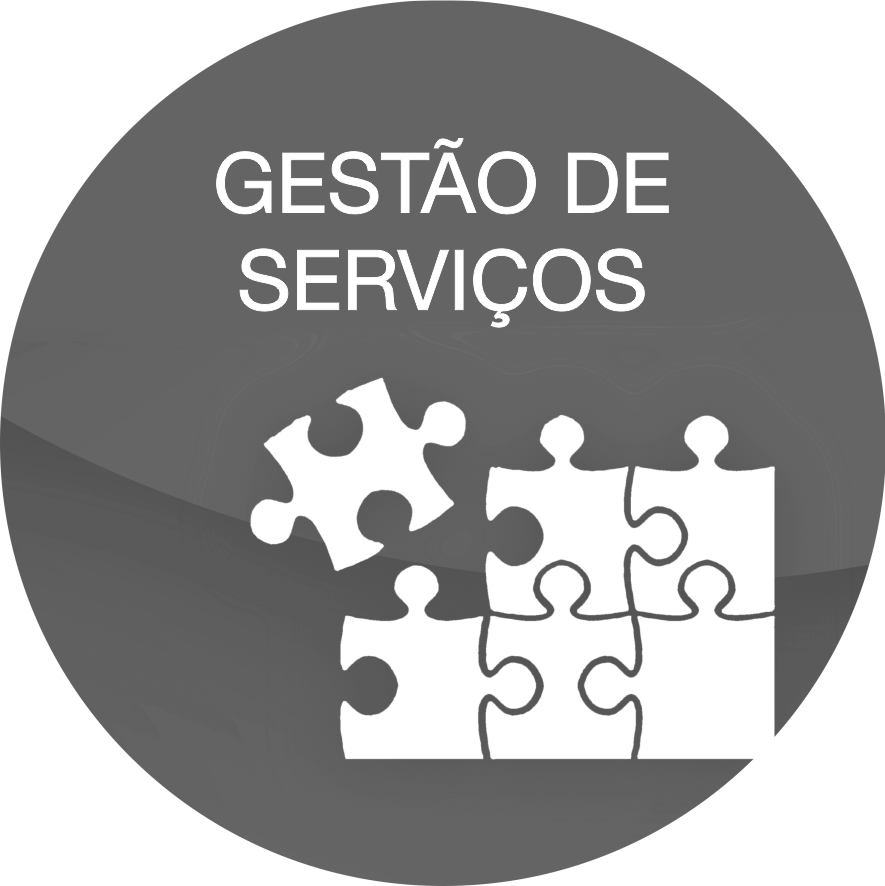 gris_gestion de servicios