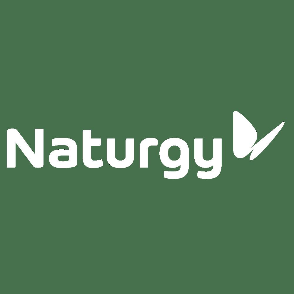 82.-Naturgy
