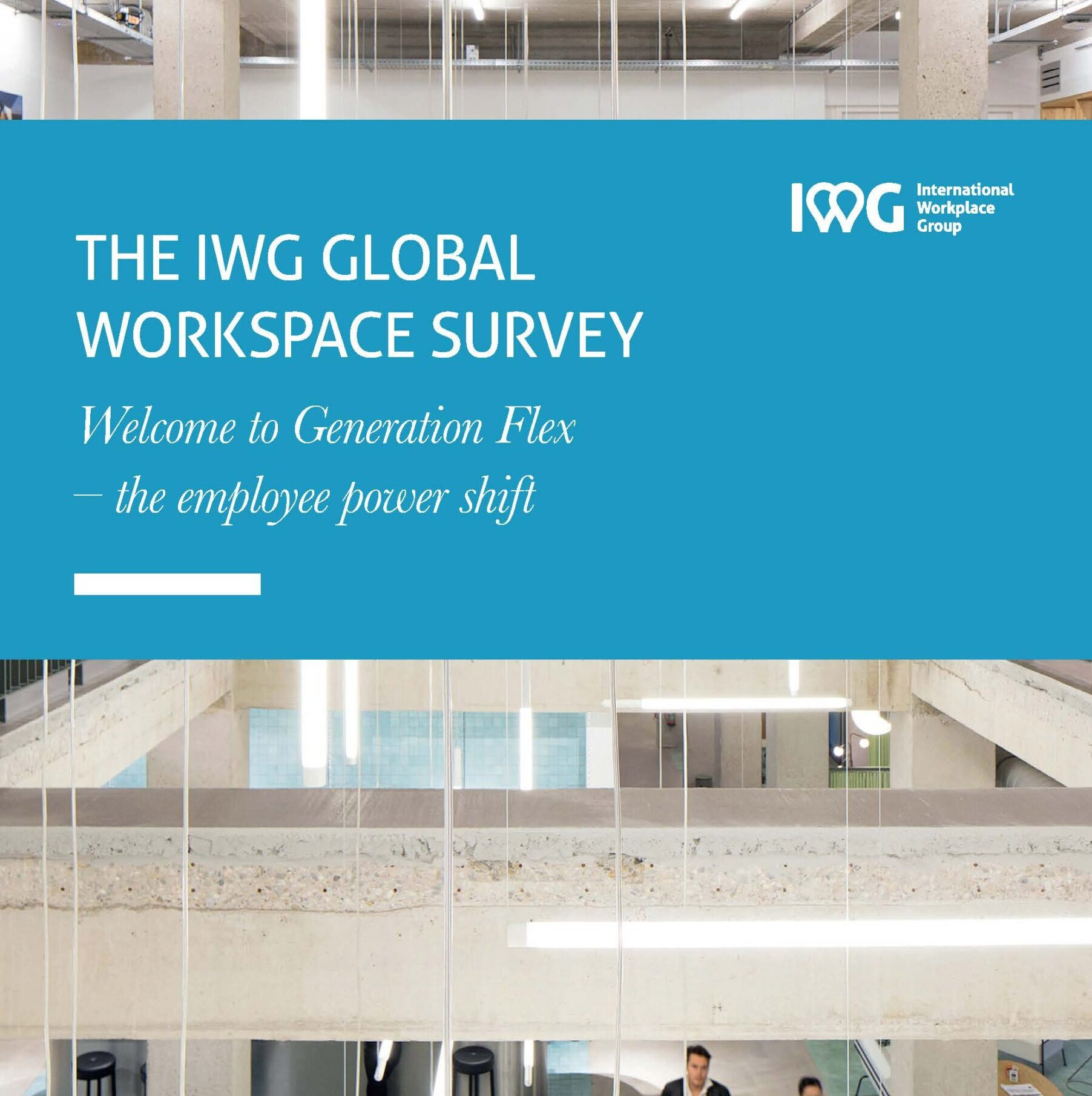 The IWG Global Workspace Survey