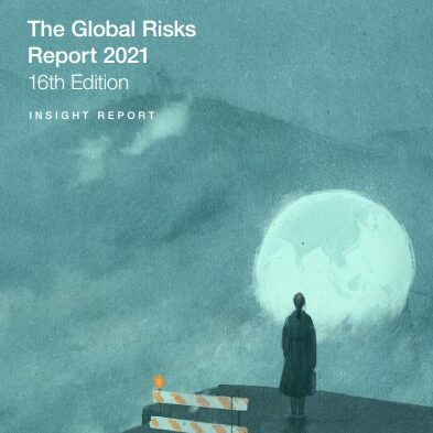 Global Risks Perception Survey 2020 Results