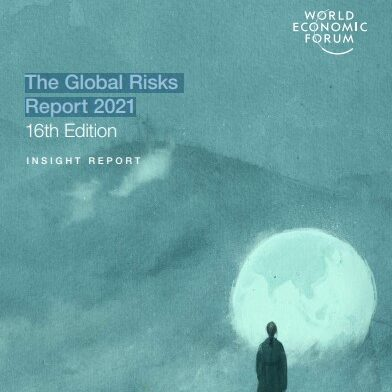 The Global Risks Report 2021